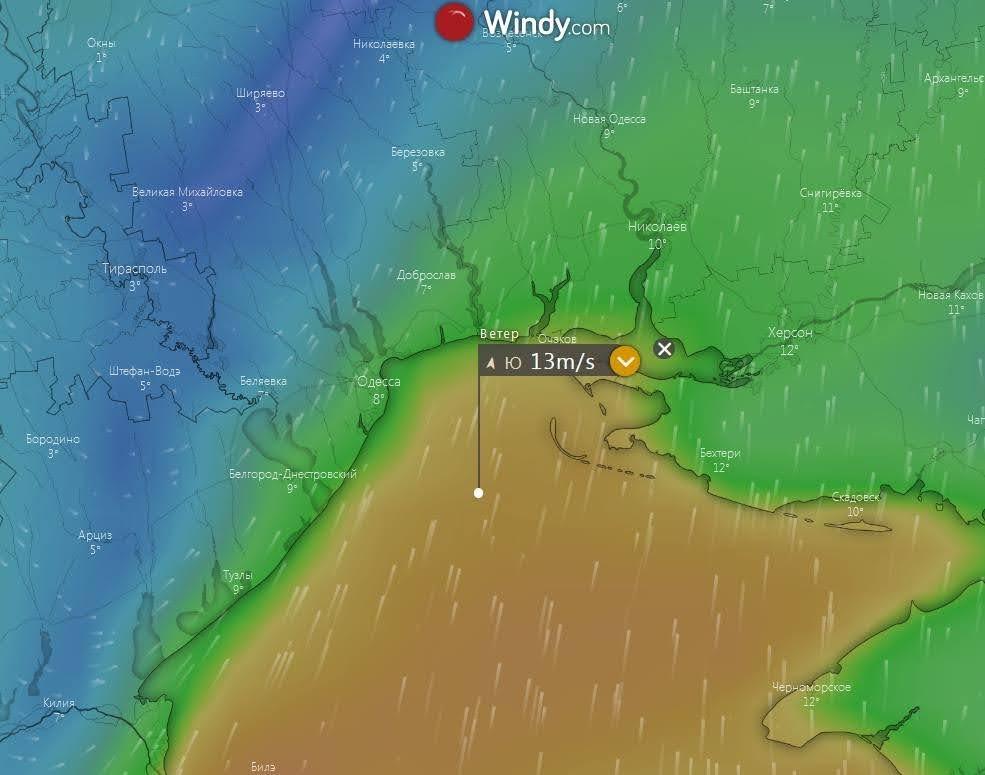 Погода в Украине на 30 января 2021 года. Скрин: Windy
