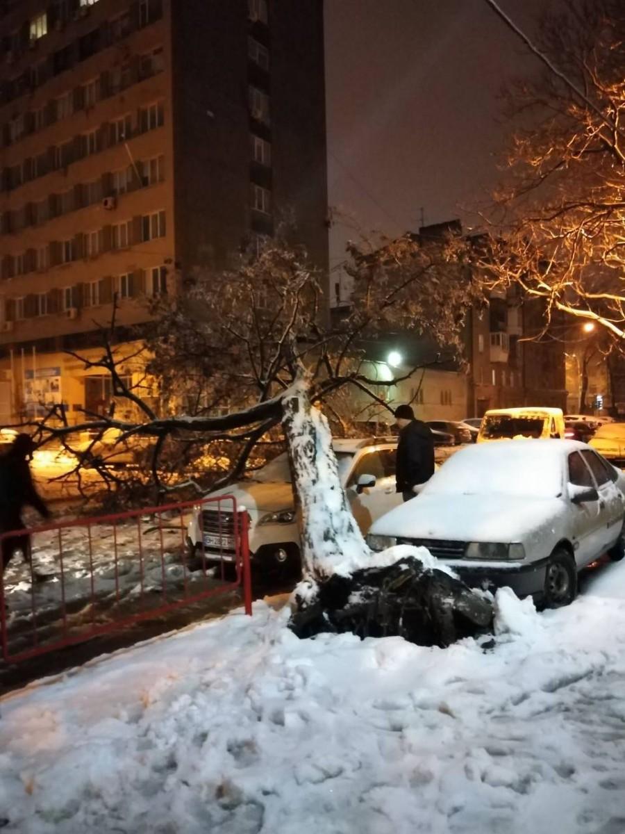 Непогода в Одессе. Фото горсовета