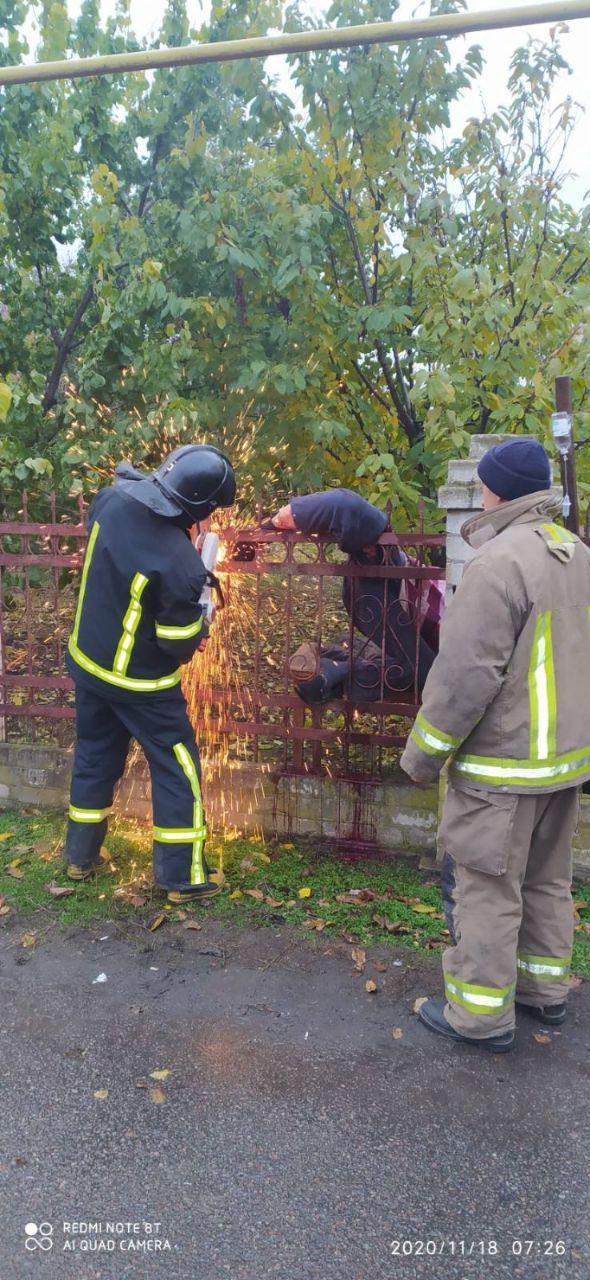 Мужчина застрял в заборе. Фото: ГСЧС