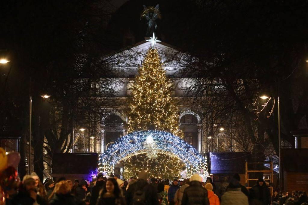 Новогодняя елка 2020 во Львове