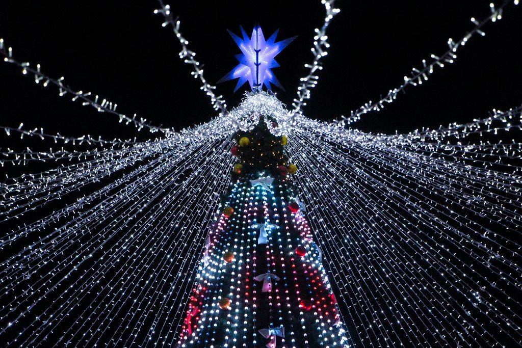 Новогодняя елка 2020 в Полтаве
