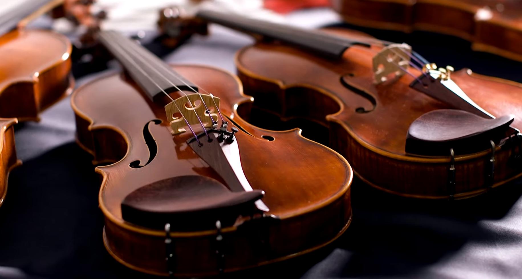 Концерт классической музыки. Фото: pinterest