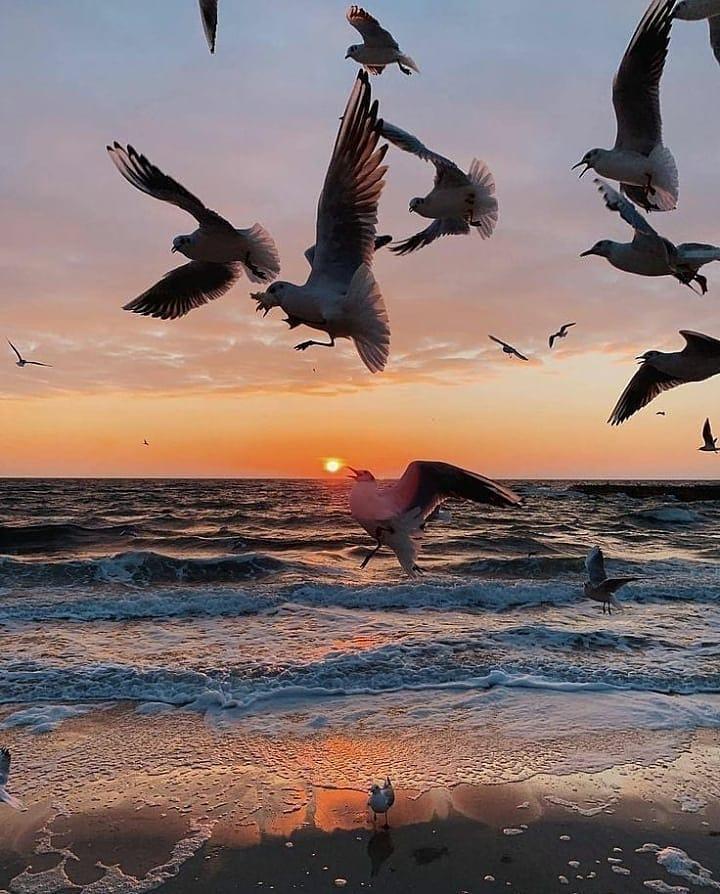 Майские закаты и рассветы: посмотри, как прекрасна Одесса. Фото: instagram.com/odessa.top.news