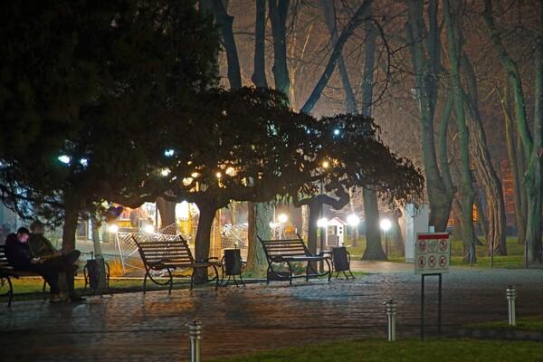 Полюбуйся ночными огнями: одесский парк украсили к Новому году фото