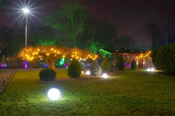 Полюбуйся ночными огнями: одесский парк украсили к Новому году фото 2