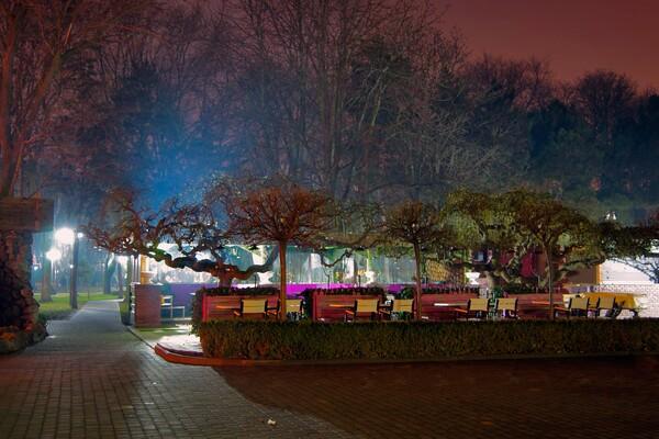 Полюбуйся ночными огнями: одесский парк украсили к Новому году фото 4