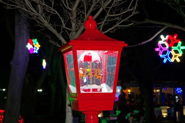 Полюбуйся ночными огнями: одесский парк украсили к Новому году фото 5