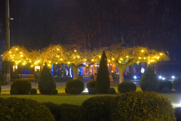 Полюбуйся ночными огнями: одесский парк украсили к Новому году фото 7