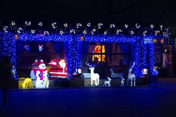 Полюбуйся ночными огнями: одесский парк украсили к Новому году фото 11