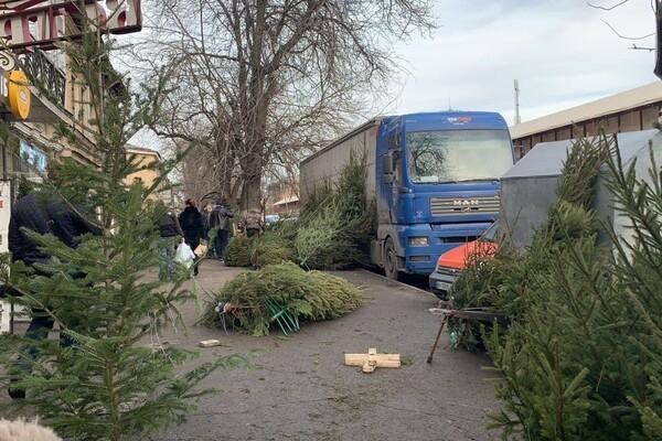 За день до Нового года: почем елки и украшения на Новом рынке фото