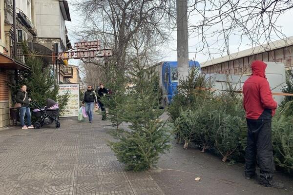 За день до Нового года: почем елки и украшения на Новом рынке фото 2