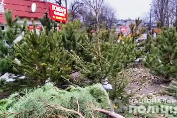 За день до Нового года: почем елки и украшения на Новом рынке фото 14