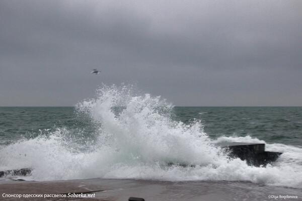 Терапия морем: смотрите, как штормит на одесских пляжах  фото