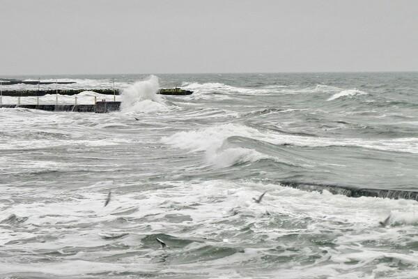 Терапия морем: смотрите, как штормит на одесских пляжах  фото 1