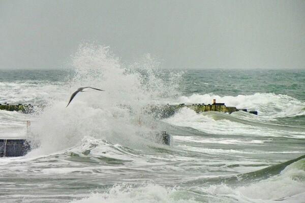 Терапия морем: смотрите, как штормит на одесских пляжах  фото 3
