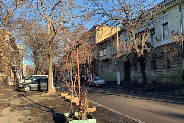 Одесса, которую ты не знаешь: где находится улица Рождественская и что о ней нужно знать  фото 45