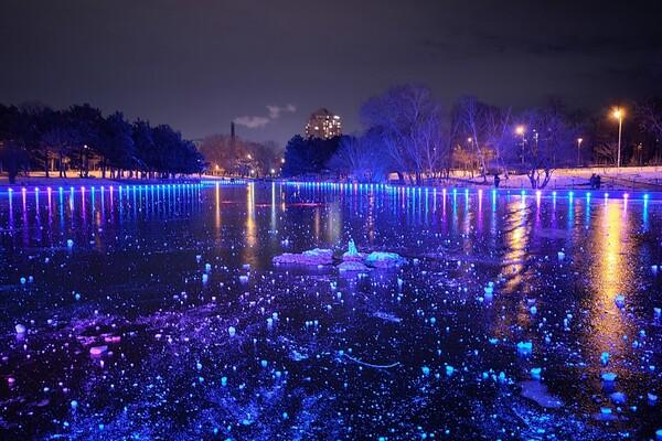 Красота рядом: смотри, как выглядит ночной парк Победы зимой фото 1
