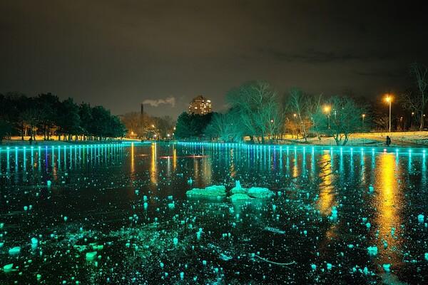 Красота рядом: смотри, как выглядит ночной парк Победы зимой фото 3
