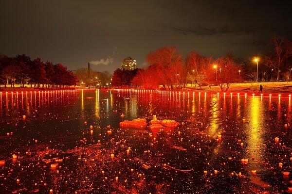 Красота рядом: смотри, как выглядит ночной парк Победы зимой фото 5