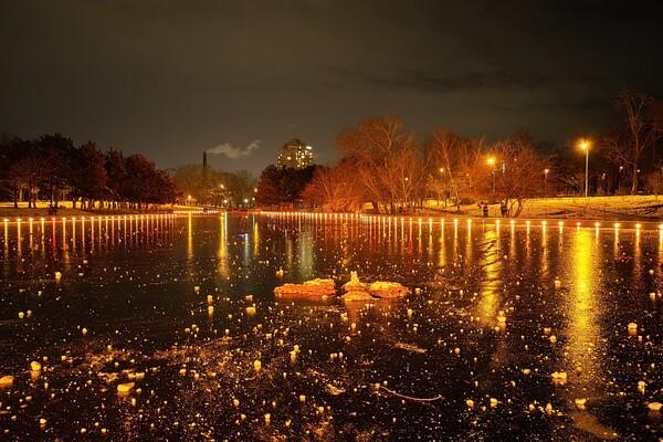 Красота рядом: смотри, как выглядит ночной парк Победы зимой фото 6