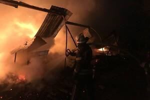 Пожарные машины застревали в грязи: под Одессой не могли потушить базу отдыха фото