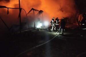 Пожарные машины застревали в грязи: под Одессой не могли потушить базу отдыха фото 1