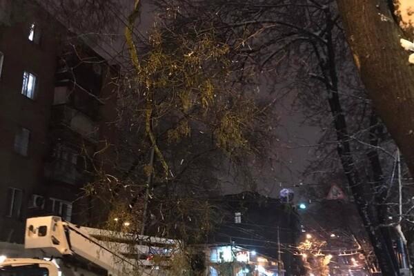 Снежная стихия: как одесские коммунальщики работают вторые сутки фото 4