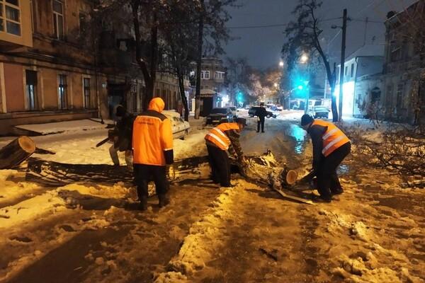 Снежная стихия: как одесские коммунальщики работают вторые сутки фото 9