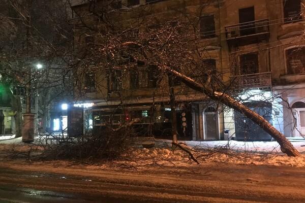 Снежная стихия: как одесские коммунальщики работают вторые сутки фото 15