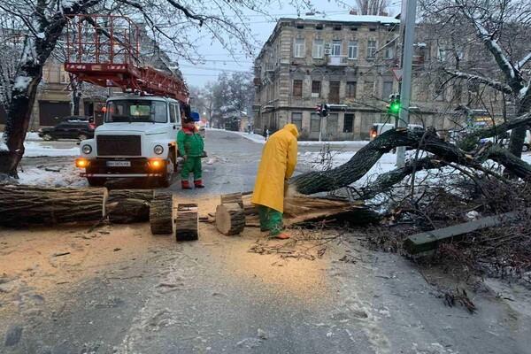 Снежная стихия: как одесские коммунальщики работают вторые сутки фото 20