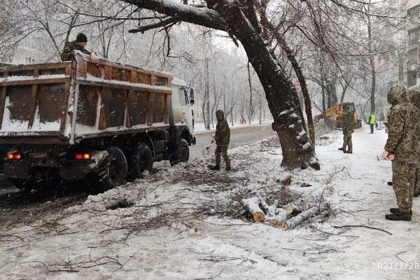 Снежная стихия: как одесские коммунальщики работают вторые сутки фото 21