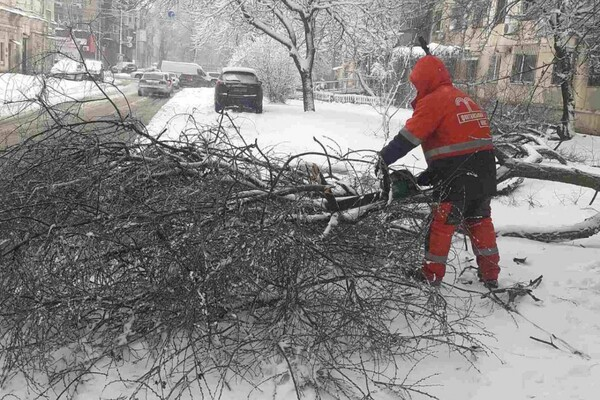 Снежная стихия: как одесские коммунальщики работают вторые сутки фото 22