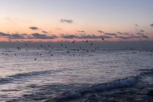 Морозные закаты и рассветы: в Одессе наблюдали алый небосвод фото 2