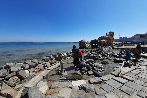 Полюбуйся: на побережье Одессы пенсионер создал пляж для птиц фото 7
