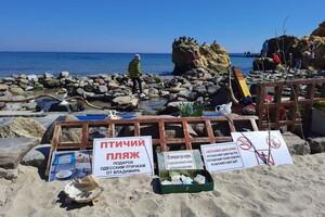 Полюбуйся: на побережье Одессы пенсионер создал пляж для птиц фото 1
