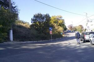 """Против парковки на обочинах: возле """"Ланжерона"""" установили разделительные столбики фото 1"""