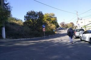"""Против парковки на обочинах: возле """"Ланжерона"""" установили разделительные столбики фото 2"""